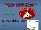 Krymka Białostocka-1